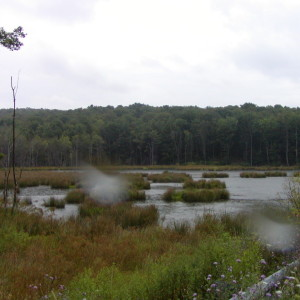 Frostburg Reservoir Watershed Assessment & Mitigation