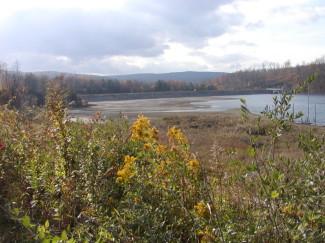Frostburg Reservoir Watershed Assessment & Mitigation